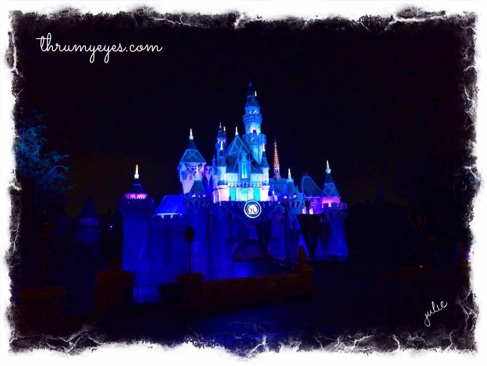 DisneylandNight
