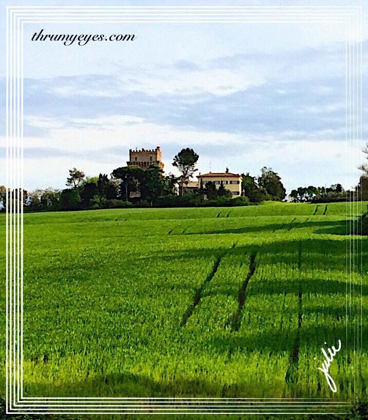 ItalianFarmlands